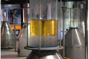 Seed-to-Seal-Mini-Distill