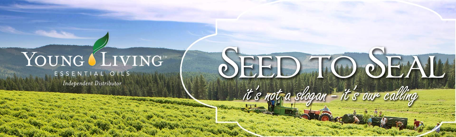 Slider-SeedtoSeal